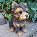 犬の置物 ヨークシャーテリア いぬ イヌ 動物 T14069 オーナメント ガーデン オブジェ 庭 雑貨 ガーデニング インテリア 陶器 マスコット ディスプレィ