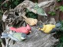 バード5羽セット 小鳥の置物 N761 とり トリ オブジェ 動物 オーナメント ガーデン