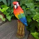 小鳥の置物 インコの置物 ベニコンゴウインコ 8298?00 とり トリ オブジェ 動物 オーナメント ガーデン 庭 マスコット 雑貨 置物 小物 リアル ディスプレィ