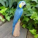 小鳥の置物 インコの置物 ルリコンゴウインコ 8299?00 とり トリ オブジェ 動物 オーナメント ガーデン 庭 マスコット 雑貨 置物 小物 リアル ディスプレィ