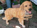 犬の置物 大型犬 ゴールデンレトリバー ウエルカム9434H2011 いぬ イヌ 動物 オーナメント ガーデン インテリア 雑貨 置物 庭 ガーデンマスコット