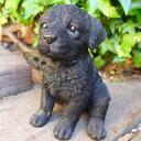 犬の置物 ラブラドールレトリバー子犬 ブラック 38QY いぬ イヌ 動物 オーナメント ガーデン インテリア 雑貨 置物 庭 ガーデンマスコット 雑貨小物