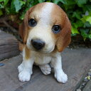 犬の置物 ビーグル いぬ イヌ 動物 T14062 オーナメント ガーデン オブジェ 庭 雑貨 ガー