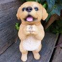 犬の置物 ラブラドールのお願い 104QY いぬ イヌ 動物 オーナメント ガーデン インテリア 雑貨 置物 庭 ガーデンマスコット 雑貨小物 ディスプレィ 陶器 リアル