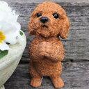 犬の置物 プードルのお願いアプリコット 7359HT いぬ イヌ 動物 オーナメント ガーデン インテリア 雑貨 置物 庭 ガーデンマスコット 雑貨小物 ディスプレィ 陶器 リアル