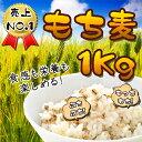 ★韓国産 もち麦 1Kg★ もちもち ぷちぷち 栄養 健康 韓国食材 麦 モチ麦 ダイエット ご飯 植物繊維 もち麦ごはん もちむぎ お米