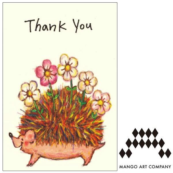 ポストカード MANGO ART COMPANY kana shimao thank you ハリネズミ