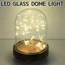 LEDライトオブジェ SPICE/スパイス LEDガラスドームライト JPDR2010