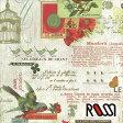 在庫限りSALE! 【ROSSI /ロッシ】輸入包装紙 CRT106 Les oiseaux (5枚入り) 10P27May16