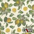 在庫限りSALE! 【ROSSI /ロッシ】輸入包装紙 CRT564 Lemons (5枚入り) 10P27May16
