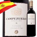 カンペスエロ ボデガス・ヴァルサクロ 2004年 スペイン ナヴァーラ 赤ワイン フルボディ 750