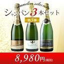 シャンパン3本セット 第5弾 シャンパンセット【YDKG-t