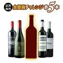 【送料無料】SALE限定セット!金銀銅チャレンジ赤5本セット 送料無料 赤ワインセット