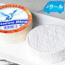 カマンベール パストリゼ 約250g CAMEMBERT PASTEURISE フランス チーズ(白カビタイ
