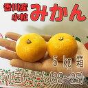 香川産 小粒みかん 5kg箱【農家直送♪】