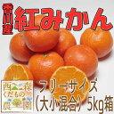 【予約販売】香川産 紅みかん 5kg箱(12月より発送!)