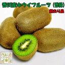 香川産 訳ありキウイフルーツ(香緑) 2kg[送料無料♪]
