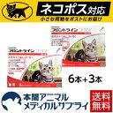 【ネコポス(ポスト投函)対応】【送料無料】猫用 フロントライ...