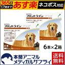 【送料無料】犬用 フロントラインプラス L (20kg〜40kg) 2箱 12本入 12ピペット【動物用医薬品】