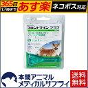 【送料無料】犬用 フロントラインプラス M (10kg〜20kg) シングルピペット 1本入 1ピペット【動物用医薬品】【365日あす楽】