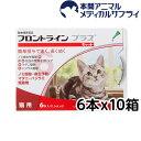 【メール便送料無料】猫用 フロントラインプラス 10箱 60...