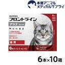 【送料無料】猫用 フロントラインプラス 10箱 60本入 60ピペット【動物用医薬品】【d_