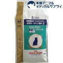 ロイヤルカナン 猫用 ベッツプラン メールケア(2kg)