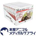 【送料無料】猫用 フロントラインプラス 10箱 60本入 60ピペット【動物用医薬品】