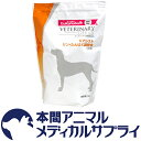 ユーカヌバ犬用 Kアシスト リン・たんぱく調整食 ドライ 3kg【食事療法食】