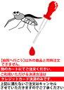 【動物病院へ行こう!】【診療・検査代】犬 フィラリア検査