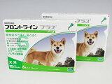 犬用 フロントラインプラス M (10kg〜20kg) 12ピペット【宅配便】【動物用医薬品】【ノミ・ダニ・シラミ駆除】【ROTA】【HLSDU】