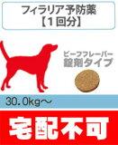 フィラリア症の診療と処方(ビーフフレーバー錠剤)超大型犬用(30.0kg?68.0kg) 1回分【動物病院へ行こう!】【診療?処方代】【宅配不可】