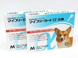 フジタ製薬犬用 マイフリーガードα M 10?20kg未満 3ピペット 2箱セット【ノミダニ駆除薬】【動物用医薬品】