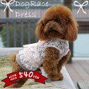 犬 服 犬服 小型犬 総レース ワンピース フリル スカート S M L  ピンクベージュ