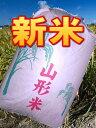 【送料無料】25年産山形県産はえぬき玄米30kg