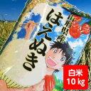 【送料無料】29年産山形県産はえぬき白米10kg【沖縄・離島...