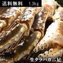 ジャンボ 生タラバガニ(生たらばがに足)1.3kg...