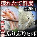 【静岡逸品セット】生しらす 200gと 生桜えび 200g【ギフト】