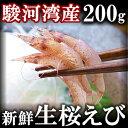 駿河湾産 高級 生桜海老(桜エビ)200g【ギフト】