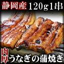 発送当日の朝焼き上げる静岡産うなぎ蒲焼き 120g 1串【ギフト】