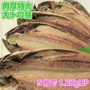 【w_fddl】特大肉厚大トロ鯖5枚 天然無添加自然食品 さ...