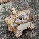信楽焼 カエル 置物 縁起物 カエル お庭 玄関先 陶器蛙 焼き物 陶器 進物 蛙 かえる 信楽焼 かわいい 7号蛙 ka-0004