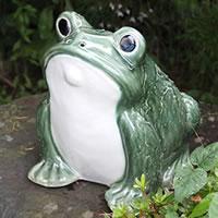 信楽焼 カエル君(緑色) 縁起物カエル お庭に玄関先に陶器蛙 やきもの 陶器 しがらきやき 蛙 陶器かえる 信楽焼カエル ka-0064