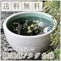 No. 10 white Misty water bowls Shin Raku suiren pots! Ideal for fish bowls, fish bowl! Water lilies pots / pottery water lily pot / Lotus pots / already pot / medaka pots / pots / pottery / water coupled pots / water bowl / water lilies pots / easy baked