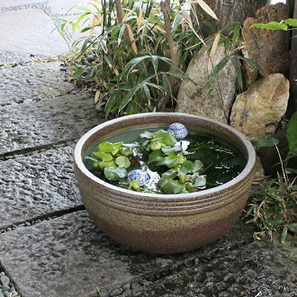 No. 13 kiln skin ball-shaped water bowls! Shin Raku suiren pots! Ideal for fish bowls, fish bowl! Water lilies pots / pottery water lily pot / Lotus pots / already pot / medaka pots / pots / pottery / water coupled pots / water bowl / water lilies pots /