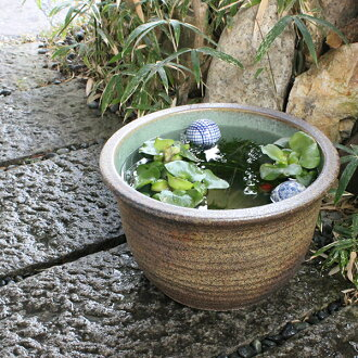 No. 11 kiln skin water bowls Shin Raku suiren pots! Ideal for fish bowls, fish bowl! Water lilies pots / pottery water lily pot / Lotus pots / already pot / medaka pots / pots / pottery / water coupled pots / water bowl / water lilies pots / easy baked L