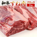 牛 すね スネ 3Kg 簡易包装 A5等級 牛肉 ブロック 肉 松阪牛 やまと の 煮込み素材 最高級