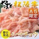 【シマチョウ500g】黒毛和牛焼肉生ホルモン 肉 牛肉 和牛...