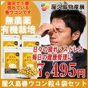 【予約20%OFF】(4月26日出荷) 屋久島 春ウコン 粒 300粒 お買い得 4袋 セット【 屋