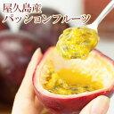 【 家庭用 】屋久島産 パッションフルーツ たっぷり 24玉 Mサイズ 【 産地直送 送料無料 訳あり 】